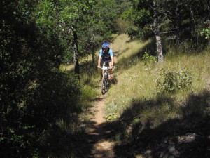 toujours  single track