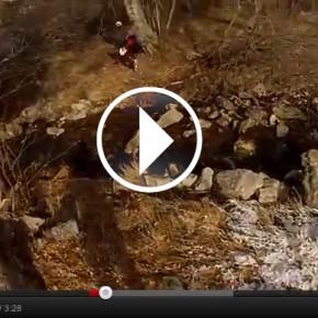 Vidéo RBMA 2012