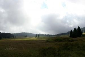 Plateau de l'Arselle