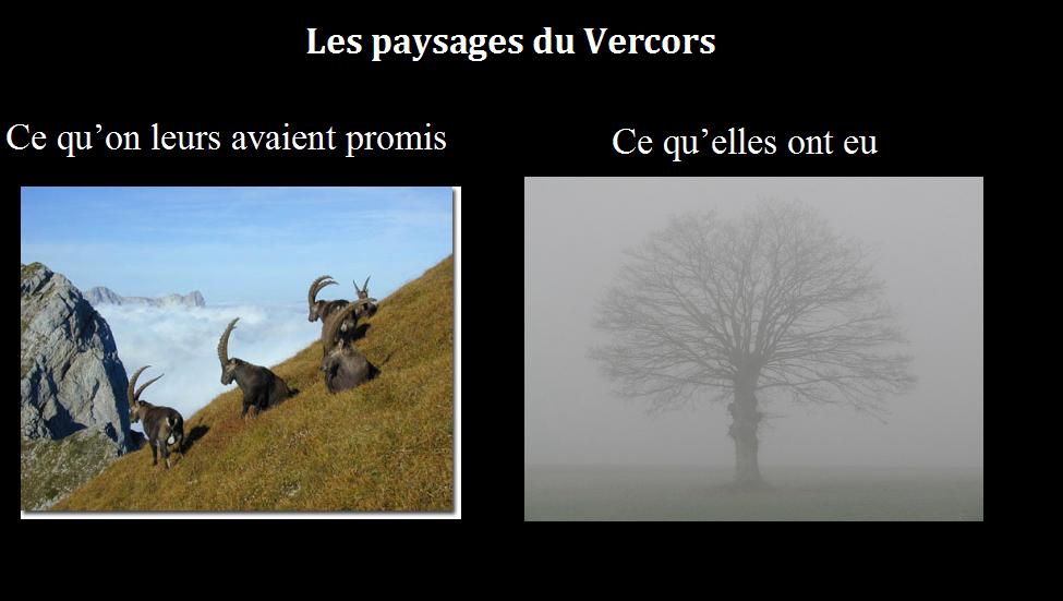 vercors_brouillard