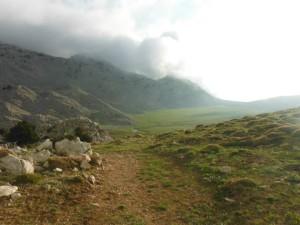 Le plateau en herbe sur le trek 2. Magnifique