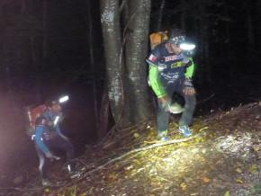 monter forêt nuit